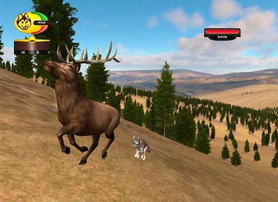 скачать игру про волков Wolfquest 3 - фото 3